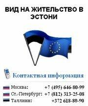 Вид на жительство в Эстонии (Евросоюзе)